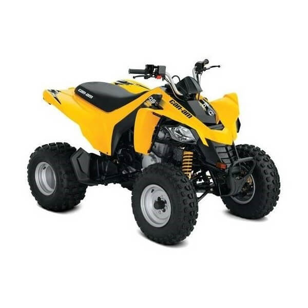 can-am ds250